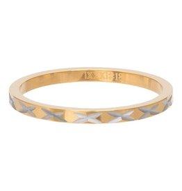 iXXXi Jewelry iXXXi Jewelry Vulring 2mm X Row Goudkleurig