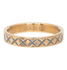 iXXXi Jewelry iXXXi Jewelry Vulring 4mm X Line Goudkleurig