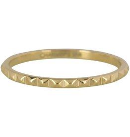 Charmin*s Charmin's R403 Gold Steel Nefertiti