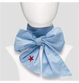 Pinned by K Pinned by K Bow Blue Star Red