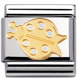 Nomination Nomination Link 030114/03 Ladybug