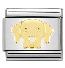 Nomination Nomination Link 030162/57 Labrador Retriever
