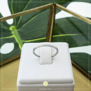 Charmin*s Charmin's R696 Petite Shiny Steel White Enamel