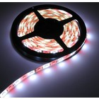 RGB + W LED-Streifen 60led p / m 5m IP65 Komplett