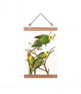 ALL THINGS WE LIKE Botanical Poster Birdies