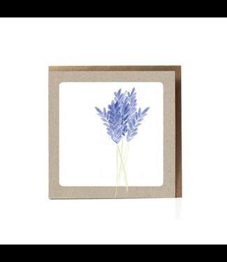 GRAFIQUELIEN •• Lavendel Wenskaart
