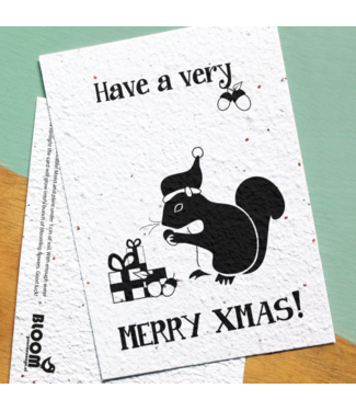 Bloom •• Bloeikaart XMAS Squirrel