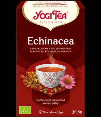 •• Echinacea