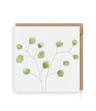 GRAFIQUELIEN •• Wenskaart groene eucalyptus