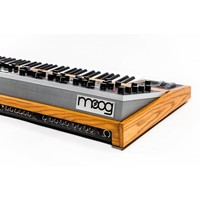 Moog Music The One 16 Voice