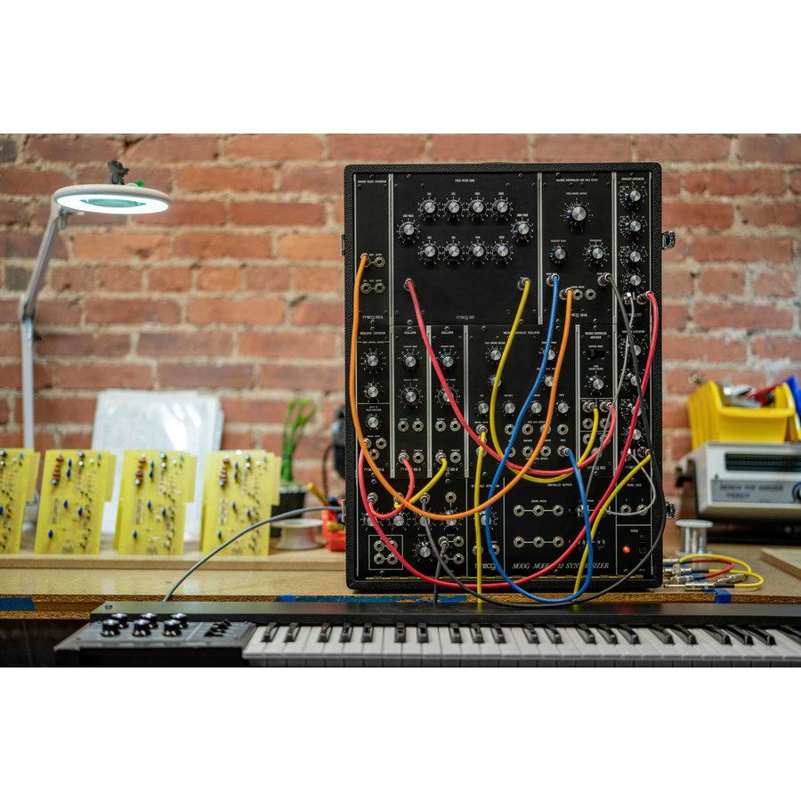 Moog Music Moog Model 10