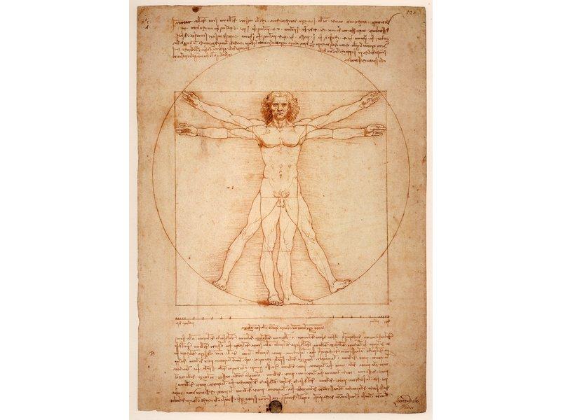 RoughMark Sticker Da Vinci homo universalis