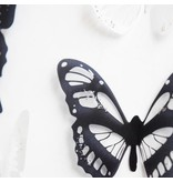 18 siervlinders wit en zwart
