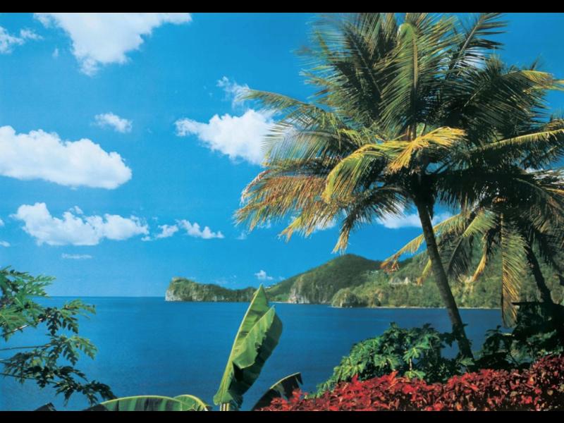 St. Lucia Vlies Fotobehang