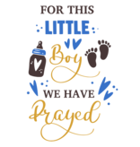 Romper for this little boy we have prayed - Baby romper met tekst - korte mouw rompertje - maat 74-80 - kraamcadeau  zwangerschapscadeau babyshower baby kleding leuke tekst - rompertjes baby