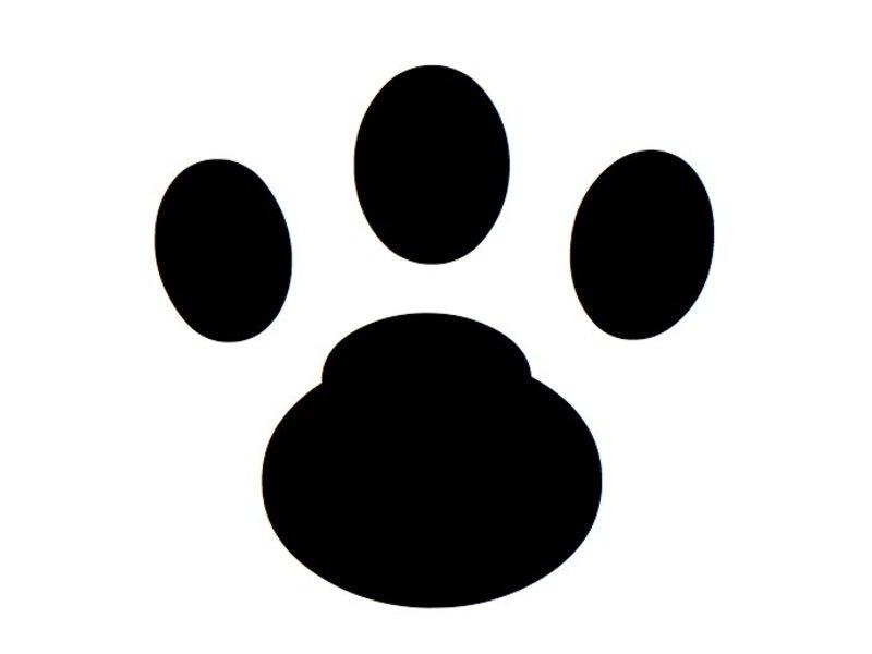 Muursticker kattenpootjes (28x)