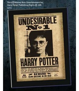 Noble Collection Harry Potter Undesirable Plaque