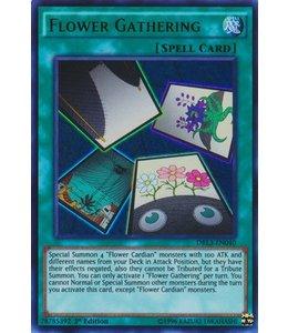 Yu-Gi-Oh! Flower Gathering - 1st. Edition - DRL3-EN040