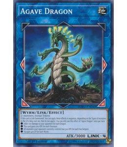 Yu-Gi-Oh! Agave Dragon - 1st. Edition - SOFU-EN048