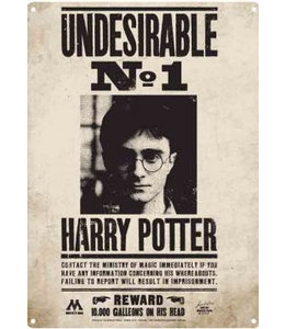 Half Moon Bay Harry Potter Tin Sign Undesirable No. 1 41 x 30 cm