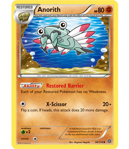 Pokemon Anorith - XY StSi - 56/114