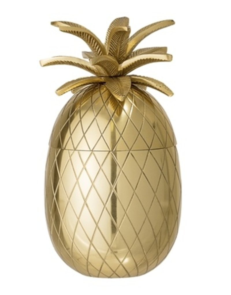 Ananas ijsemmer