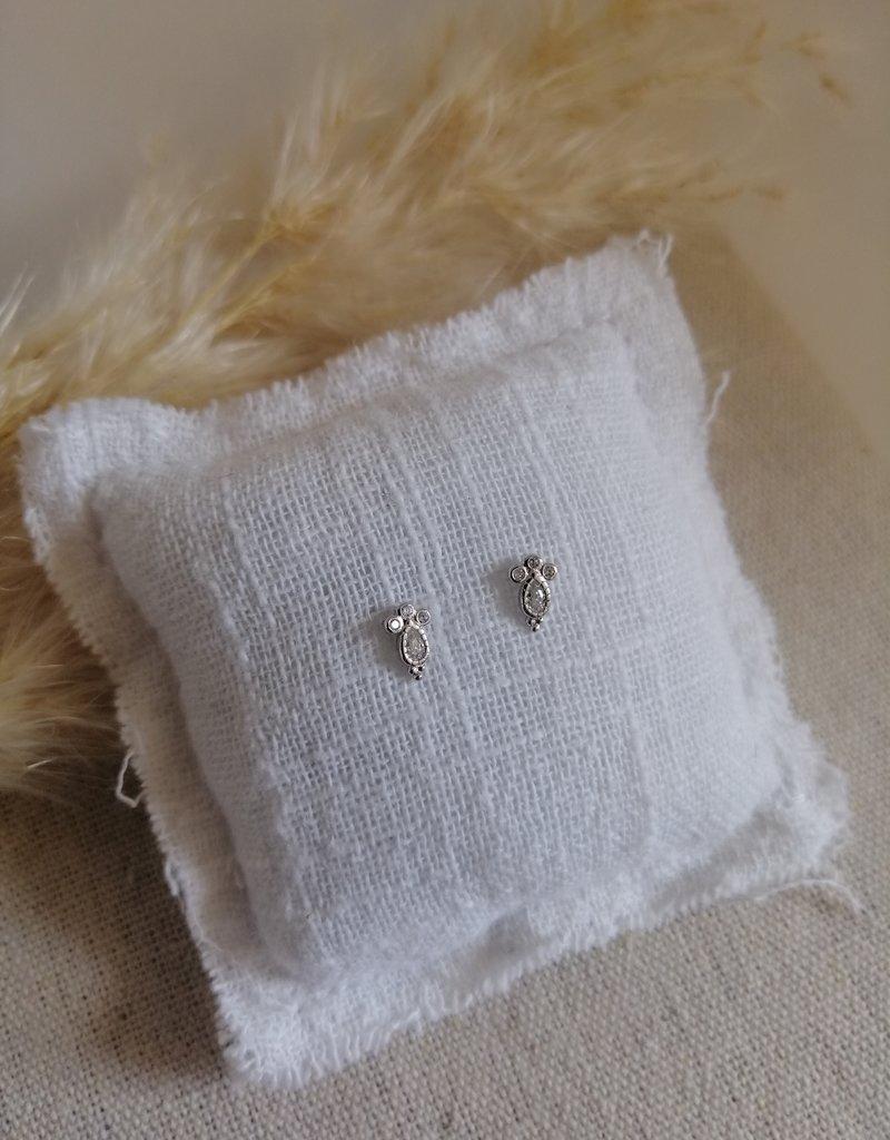 Kleine zilveren oorbellen