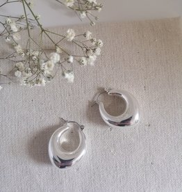Chunky earrings silver/gold