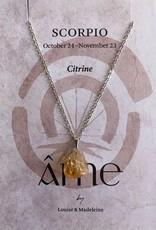 ÂME Horoscope necklace Scorpio