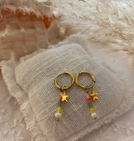 Coloured earrings with little stones