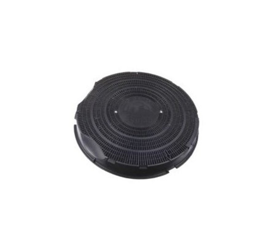 Carbon filter FAC309 - CHF30 - Type 30 - 484000008609