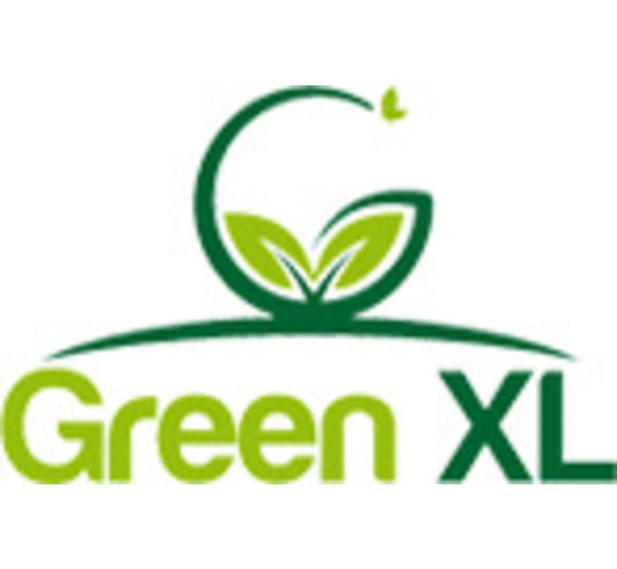 FOAM CLEAN  - Green XL - 500ml