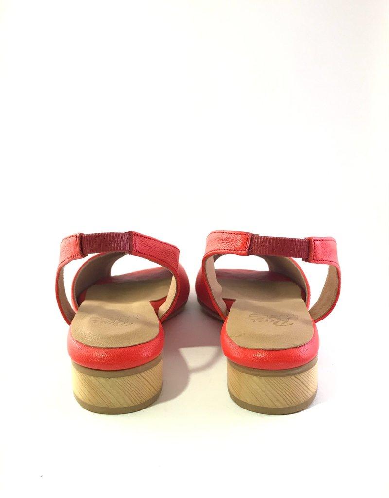 Ray Musgo Ray Musgo, Tormo sandaal