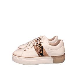 Roberto d'Angelo platform sneaker wit