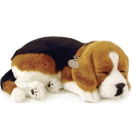 Perfect Petzzz Perfect Petzzz Hond Beagle