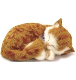 Perfect Petzzz Perfect Petzzz Knuffel Kitten Orange Tabby