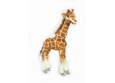 Giraffe Knuffel