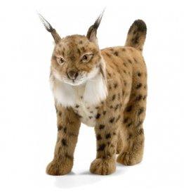 Hansa Spaanse Lynx 35 cm