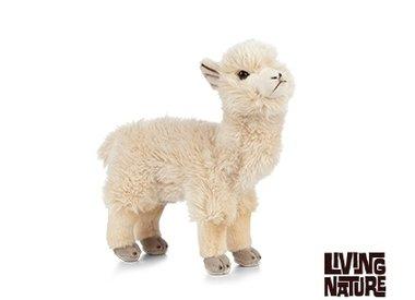 Alpaca Knuffel, Knuffel Lama