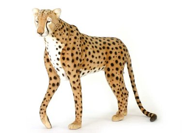 Cheetah Knuffel