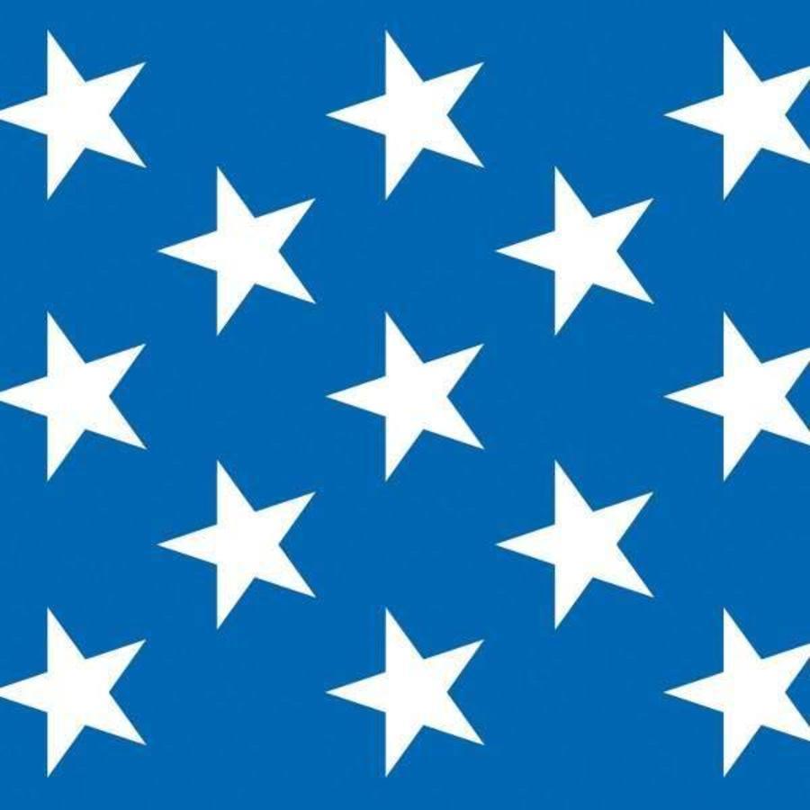 Scenesetter USA Stars