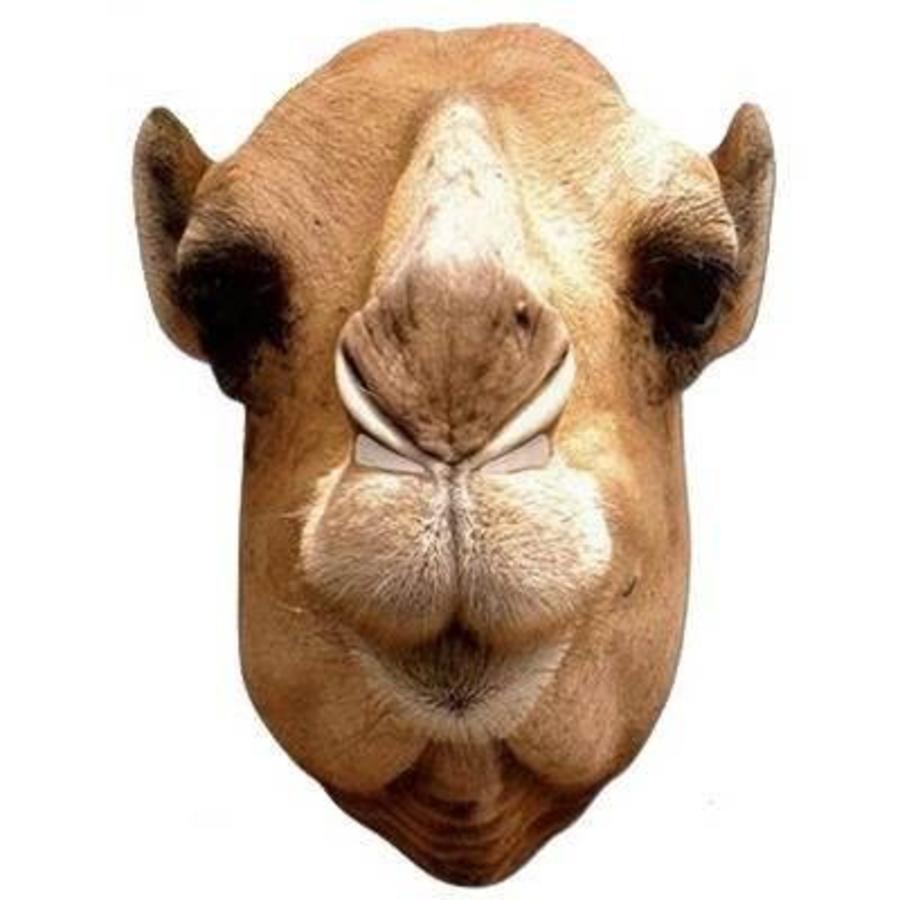 Masker kameel