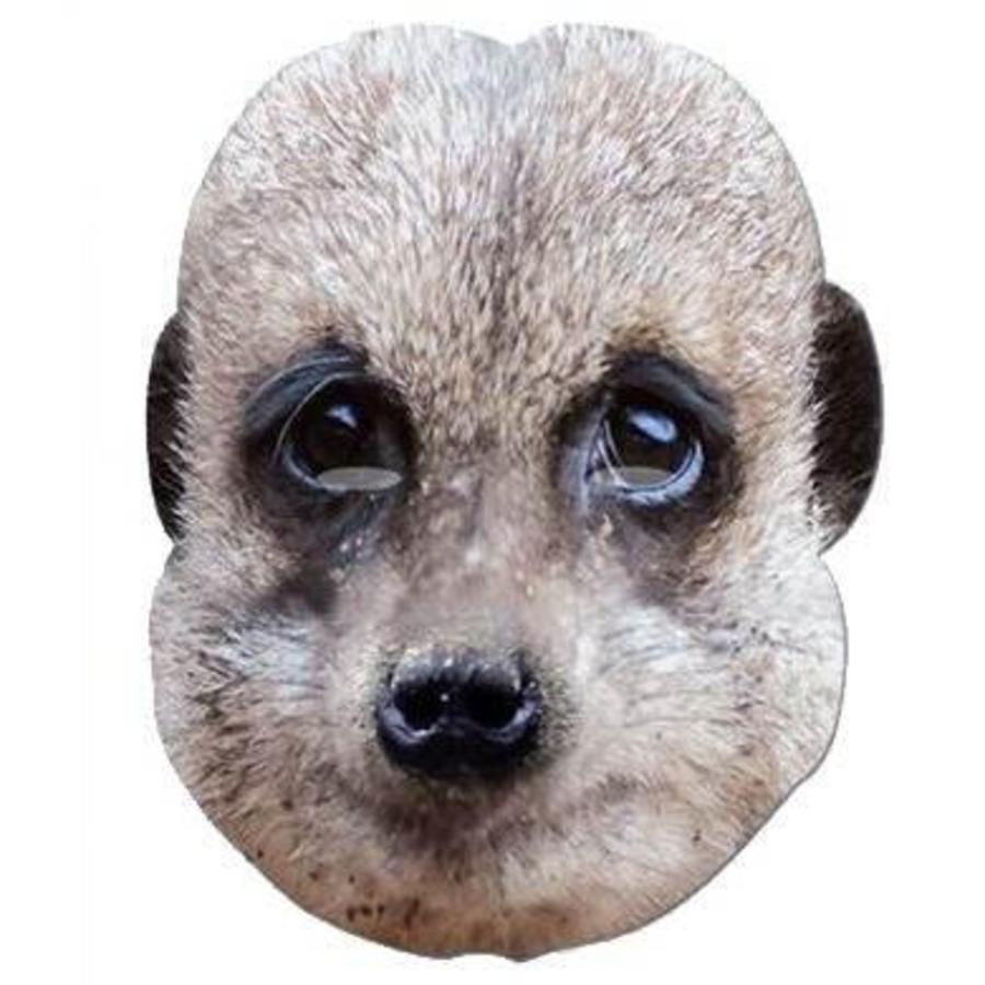 Masker meerkat