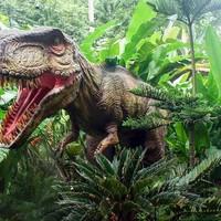 Kinderfeestje dinosaurus is populair thema