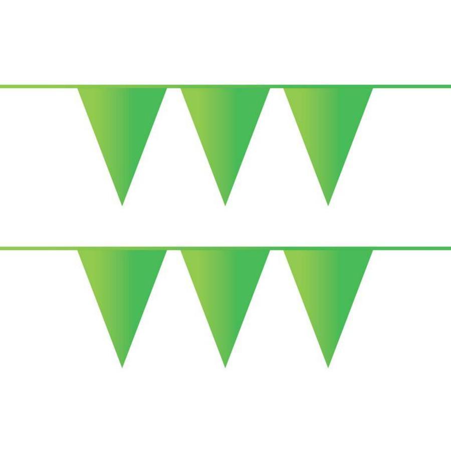 Vlaggenlijn lichtgroen plastic 10 meter