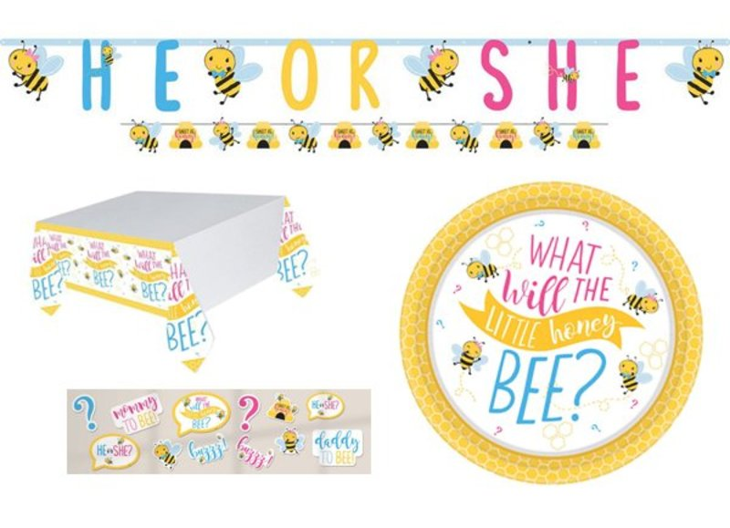 Gender reveal versiering he or she