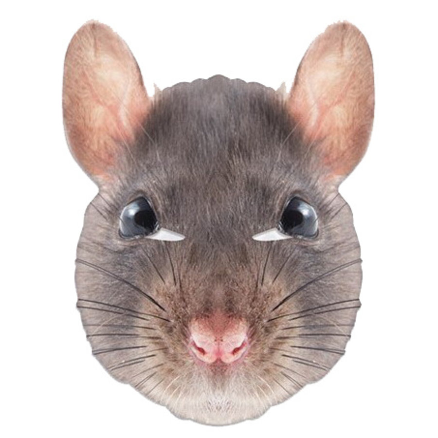 Masker Rat