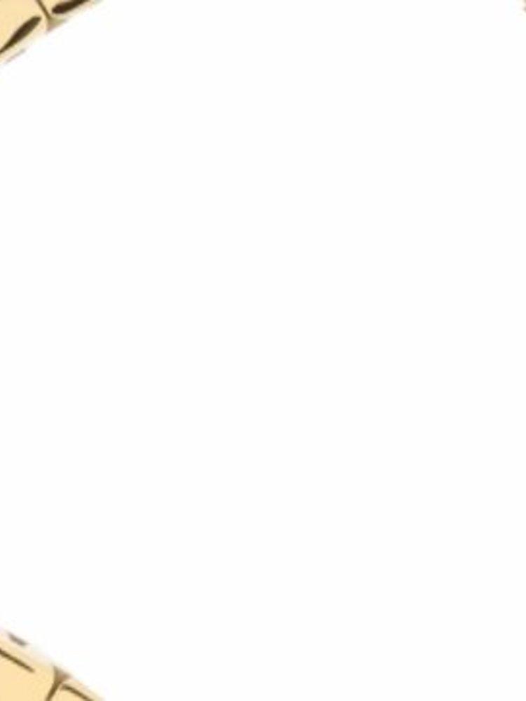 Michael Kors Michael Kors MK5055 Dameshorloge