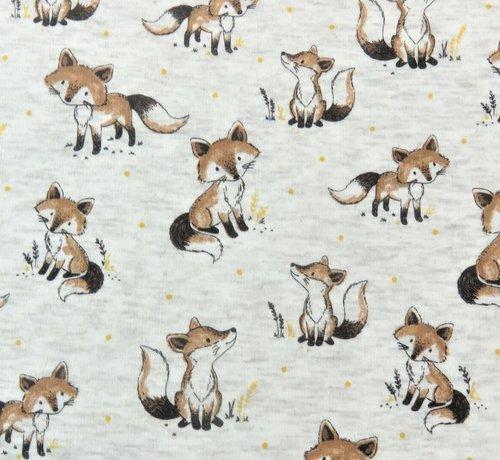 Decostoffen Fox ecru - alpen sweat