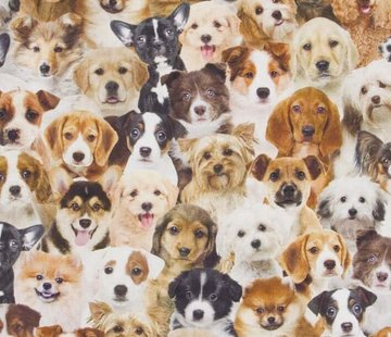 Honden digitale print